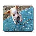 Dancing Chihuahua Mousepad