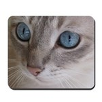 Blue Eyed Cat Mousepad