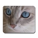Blue Eyed Cat Mousepad