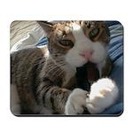 Cat Attack Mousepad
