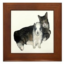 Mal-Shi puppy and her cat friend Framed Tile