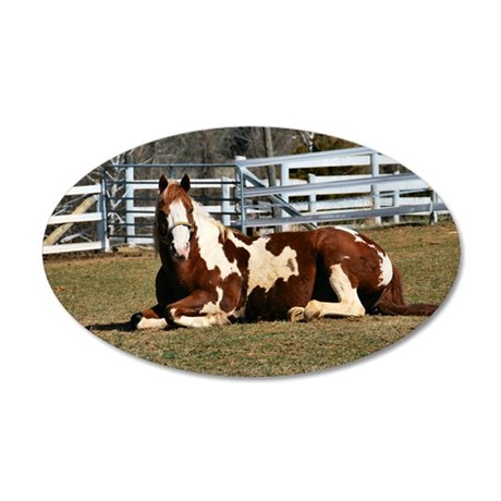 My Paint Horse Sunbathing 35x21 Oval Wall Decal