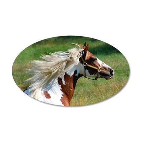 My Paint Horse Profile 35x21 Oval Wall Decal