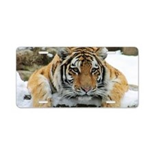 Tiger Watch Aluminum License Plate
