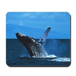 Breeching Humpback Whale Mousepad