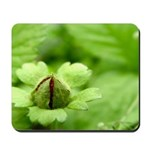 Green Bud Mousepad