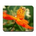 Orange Flower Mousepad