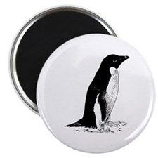 Penguin Sketch Magnet