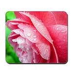 Dewy Camellia Mousepad