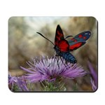 Red and Black Butterfly Mousepad