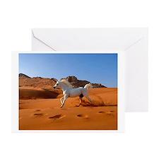 Arabian Desert Horse Greeting Cards (Pk of 10)