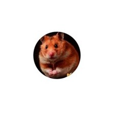 Hamster Mini Button