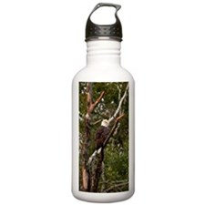 American Bald Eagle #1 Water Bottle