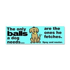 Neutered Car Magnet 10 x 3