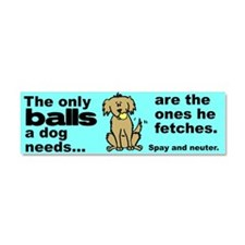 Funny Animal welfare Car Magnet 10 x 3
