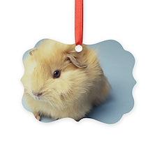 Cream colored Guinea pig Ornament