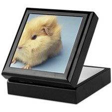 Cream colored Guinea pig Keepsake Box