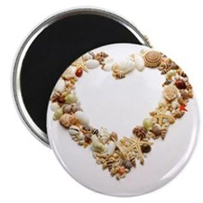 Assorted seashells form heart shape, close- Magnet