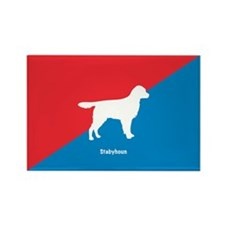 Stabyhoun Rectangle Magnet (100 pack)