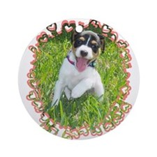 Smiling Rat Terrier Ornament (Round)