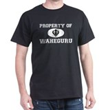 Property of Waheguru T-Shirt