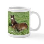 Daydream Foal Colt Horse Lover Coffee Mug