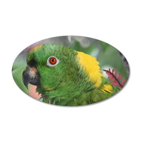 Yellow Nape Amazon Parrot 35x21 Oval Wall Decal