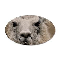 (13) Llama 8716 35x21 Oval Wall Decal