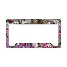 Emma Tabby Kitten in Flowers  License Plate Holder