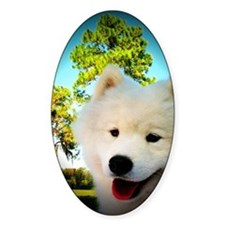 Chi Samoyed Decal