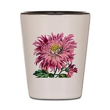 Pink Chrysanthemum Shot Glass
