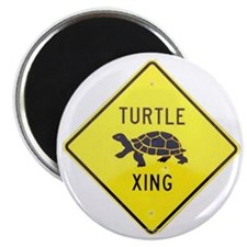 Turtle Crossing Magnet