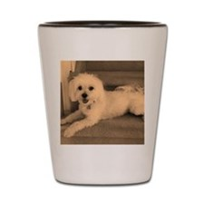 Sadie 4 Shot Glass