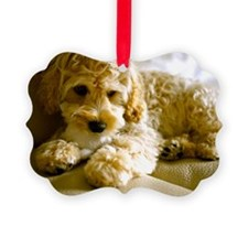 The Cockapoo Puppy Ornament
