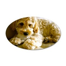 The Cockapoo Puppy Wall Decal