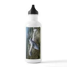 LJ25a Water Bottle
