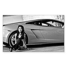 Lamborghini Mercy Decal