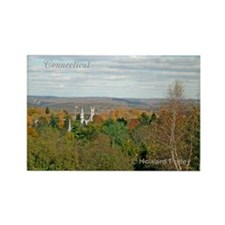 Connecticut Rectangle Magnets (100 pack)