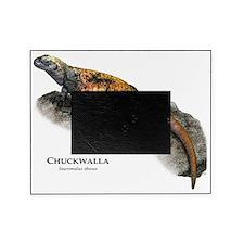 Chuckwalla Picture Frame