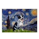 Starry-AussieCattlePup2 Postcards (Package of 8)