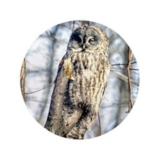 "Great Gray Owl 3.5"" Button"