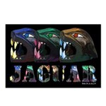 Jaguar Postcards (Package of 8)
