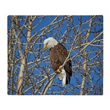 Magnificent Bald Eagle Throw Blanket