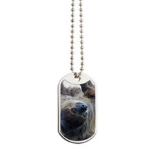 Sloth iPad Folio Cover Dog Tags