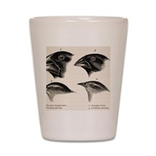 Darwin's Galapagos Finches Shot Glass