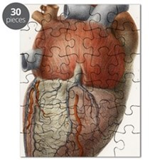 Heart anatomy, 19th Century illustration Puzzle