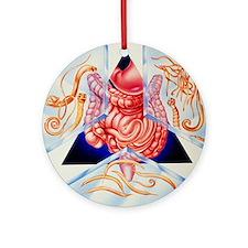 Artwork of various intestinal paras Round Ornament