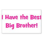I Have the Best Big Brother - Sticker (Rectangular