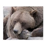 Grizzly bear Fleece Blankets