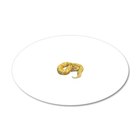 Albino Ball Python 20x12 Oval Wall Decal